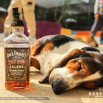 Rượu Jack Daniel's Red Dog Saloon