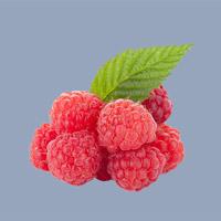 Nguyên Liệu Pha Chế Jack Daniels - Fresh Respberries